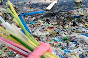 img-Plastic Straws